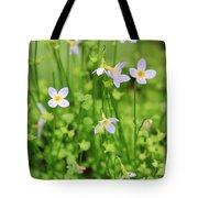 Spring Beauties Tote Bag
