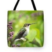Spring Beauty Hummingbird Square Tote Bag