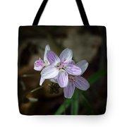 Spring Beauty Macro Tote Bag