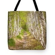 Spring Birch Tote Bag