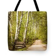 Spring Birches Woods Footpath Tote Bag