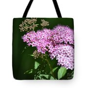 Spring Bloomers  Tote Bag