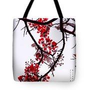 Spring Blossom In Maldives. Flamboyant Tree Tote Bag