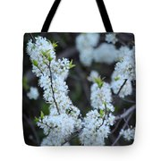 Spring Blossoms 2 Tote Bag