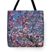 Spring Blossoms Against Blue Sky Tote Bag