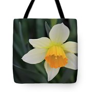 Spring Bow Tote Bag