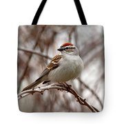 Spring Chipping Sparrow Tote Bag