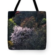 Spring Colors On The Parkway Tote Bag