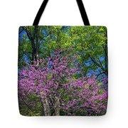 Spring Colors Tote Bag