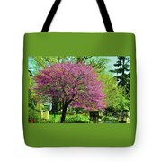 Spring Contrasts At Joslyn Castle Omaha Tote Bag