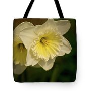 Spring Couple Tote Bag