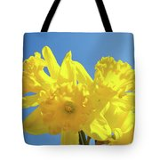 Spring Daffodils Flowers Garden Blue Sky Baslee Troutman Tote Bag