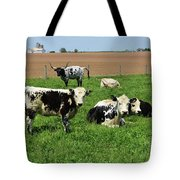 Spring Day With Cows On An Amish Cattle Farm Tote Bag