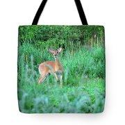 Spring Deer Tote Bag