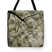 Spring Display Tote Bag