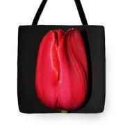 Spring Drop  Tote Bag