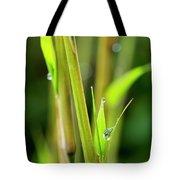 Spring Droplets Tote Bag