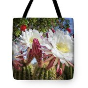 Spring Easter Cactus Blooms 789 Tote Bag