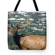 Spring Elk Tote Bag