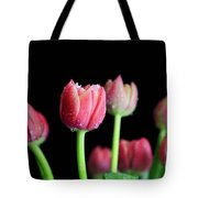 Spring Equinox Tote Bag by Tracy Hall