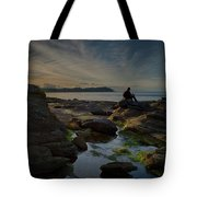 Spring Evening Tote Bag