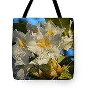 Spring Exuberance  Tote Bag