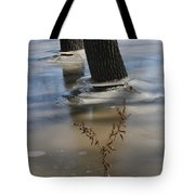 Spring Flood Tote Bag