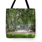 Spring Floodwaters. Altai Tote Bag