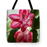 Spring Flower 7 Tote Bag