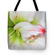Spring Flower Macro Tote Bag
