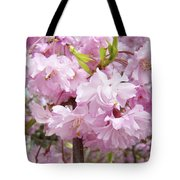 Spring Flowering Trees Art Prints Pink Flower Blossoms Baslee Tote Bag