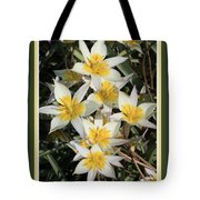 Spring Flowers With Green Border Tote Bag