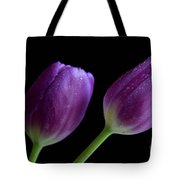 Spring Forward Tote Bag by Tracy Hall