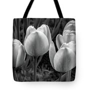 Spring Garden - Act One 2 Bw Tote Bag