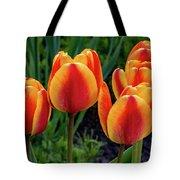 Spring Garden - Act One 2 Tote Bag