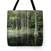 Spring Green In Cypress Swamp Tote Bag