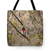 Spring Grosbeak Tote Bag