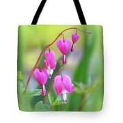 Spring Hearts - Flowers With Vignette 2 Tote Bag