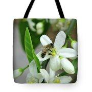 Spring Honey Bee Pollinates Orange Citrus Flower Tote Bag