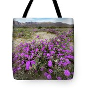 Spring In Anza  Tote Bag