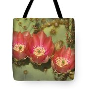 Spring In Arizona Tote Bag