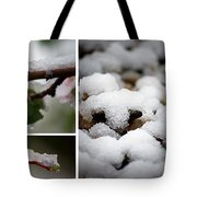 Spring In Calgary Tote Bag