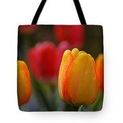 Spring In Colors Tote Bag