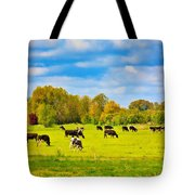Spring In Holland-1 Tote Bag