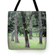 Spring In Rome Tote Bag