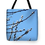 Spring In Taufkirchen Tote Bag