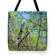 Spring In The Deep Woods Tote Bag