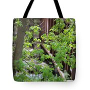 Spring In The Mountains At American Fork Canyon Utah Tote Bag