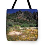 Spring In The Pinnacles Tote Bag by Kathy Yates