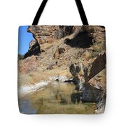 Spring In Vogel Canyon Tote Bag